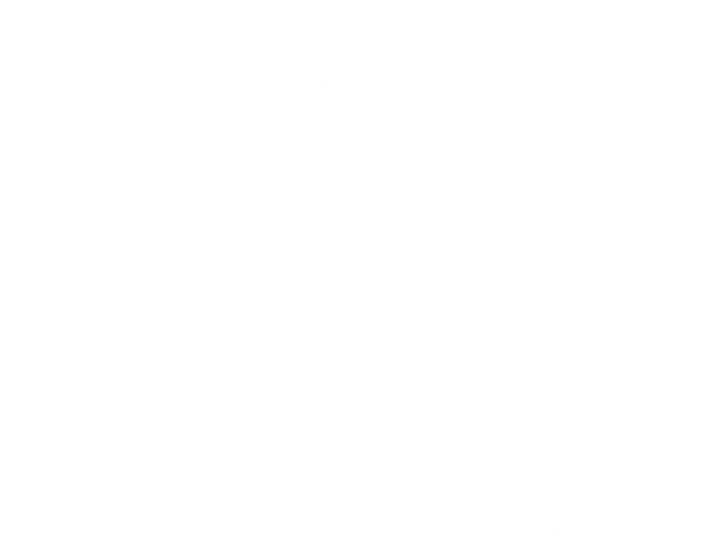 conifer tower palms PNG